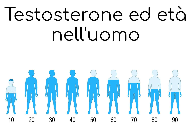 Andamento qualitativo del testosterone nella vita dell'uomo