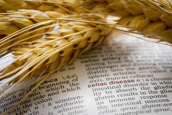 Fotografia di grano appoggiato a un dizionario aperto sulla pagina della celiachia