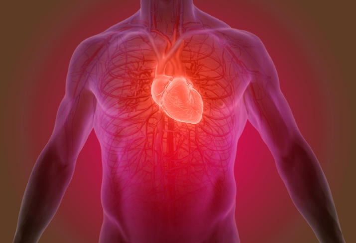 Ricostruzione grafica della posizione anatomica del cuore