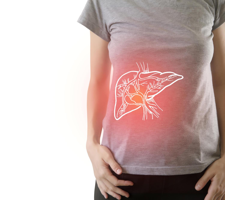 Fegato disegnato in sovraimpressione sull'addome di una donna