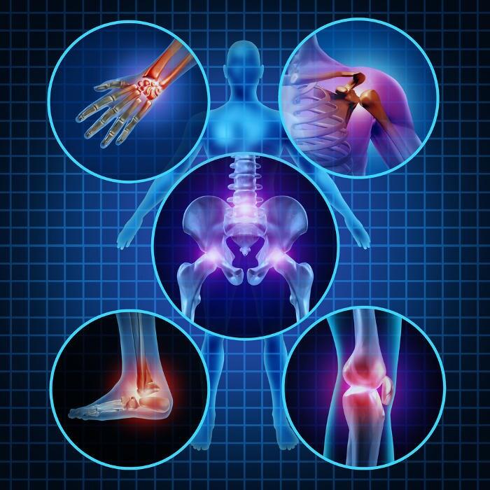 Rappresentazione grafica delle articolazioni del corpo umano