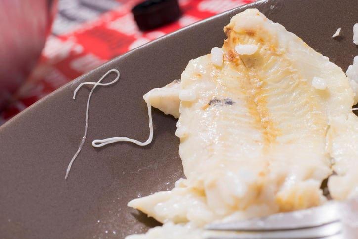Anisakis nel piatto