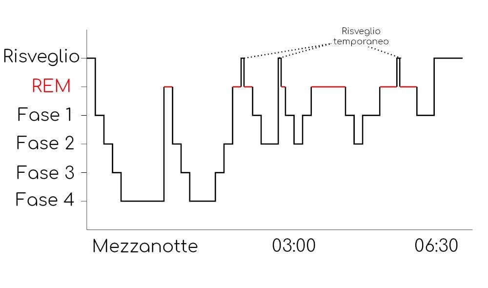 Grafico con le fasi del sonno